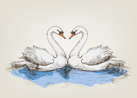 Two swans on lake love symbol Ilustrace