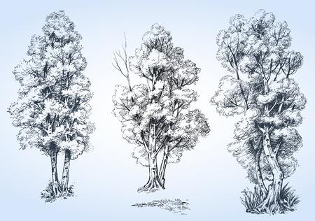 Los árboles aislados set, dibujado a mano detallada