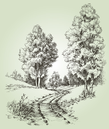 pencil drawing: A path in the forest Illustration