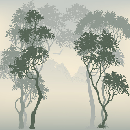 sunset tree: Forest background Illustration
