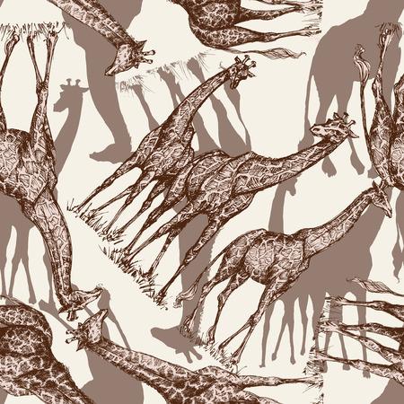 animal print: El estampado de animales ,, patrón transparente de la jirafa