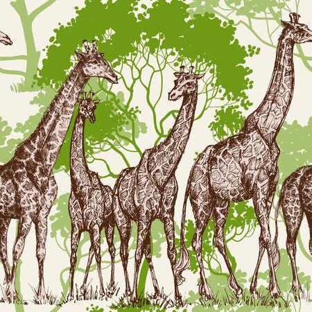 wilderness: Animal print, safari wallpaper, giraffe in wilderness pattern