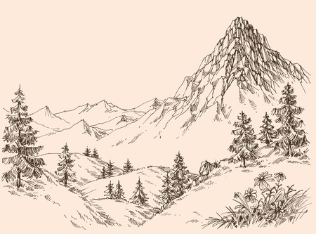 Nature in the mountains vector