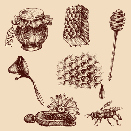 apiculture: Honey and apiculture set. Bee vector icons collection