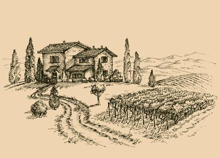 Vineyard tekening. Traditionele boerderij schets