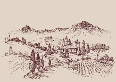 Vineyard schets. Wijnetiket ontwerp. Landelijk landschap tekening