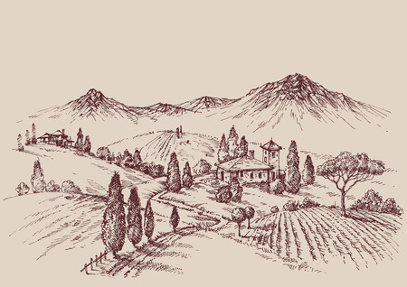 Vineyard sketch. Wine label design. Rural landscape drawing 向量圖像