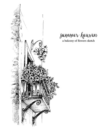 Balcony with flowers drawing, flowerpots sketch. Stylish way of life concept