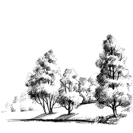 beautiful garden: Forest sketch. Beautiful garden hand drawing, artistic nature background