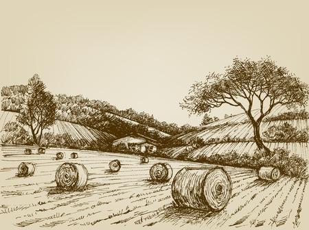 Landschap oogst, boerderij veld en hooibalen