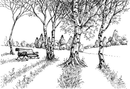old pencil: Garden in the sunlight drawing. A bench in the park