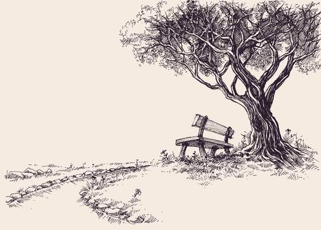 Park Skizze. Eine Holzbank unter dem Baum