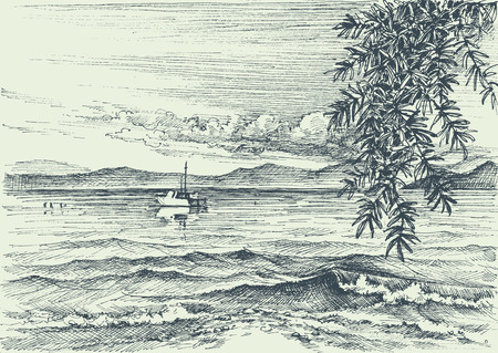 water wave: Calm sea view etching, an olive tree on shore Illustration