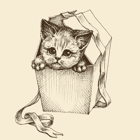 Gifting a pet illustration, cute curious cat getting out of the box