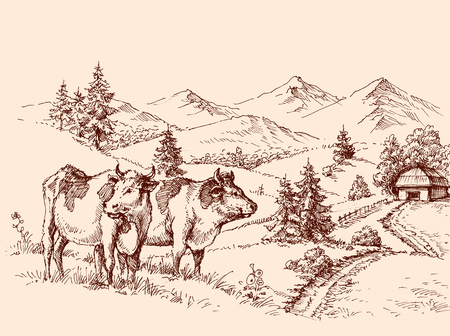 Cows farm drawing, dairy label design grazing cattle Stock Illustratie