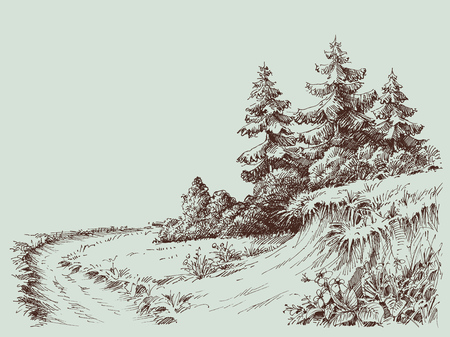 Nature drawing, a path in the pine forest