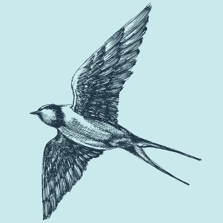 Faire avaler en vol, dessin détaillé à la main Banque d'images - 76827686