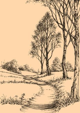 Een pad in het park schets behang