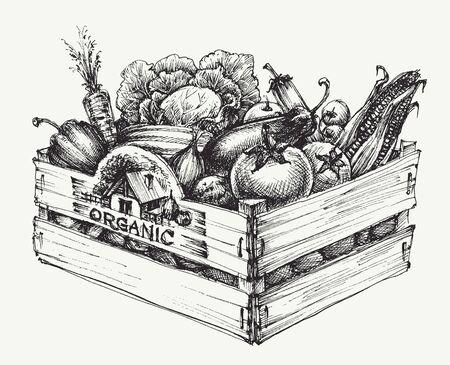 Caisse en bois pleine d'aliments biologiques isolés, légumes biologiques de ferme, mot organique écrit dans le bois Vecteurs