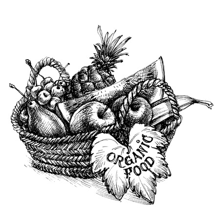 Basket full of fruits, organic food written on a leaf Illustration