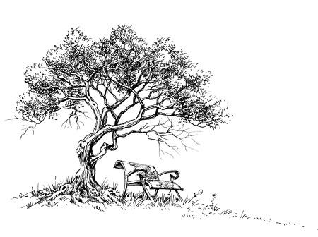 Een bank onder het boompark of tuinbehang