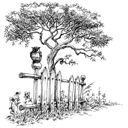 Owl sitting on a wooden fence rural landscape