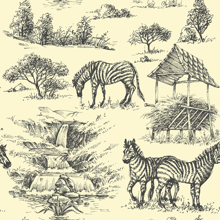 Nature seamless pattern. Zebra and wilderness, safari background