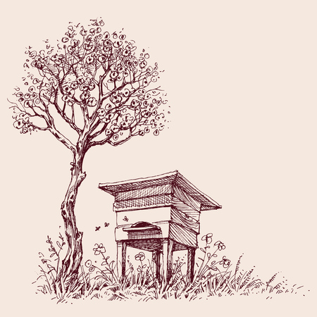 Beehive under a tree in bloom Illustration
