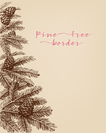 Pine tree branches, pine cones hand drawn in detail border