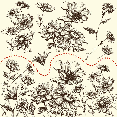 Floral set. A collection of hand drawn flowers, border, bunch or isolated design elements