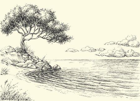 Olijfboom op zeekusttekening Vector Illustratie