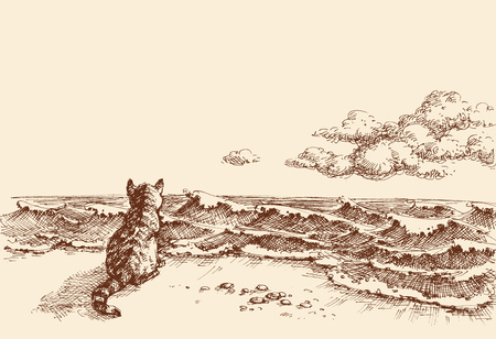 A cat on the beach watching the sea vector hand drawing