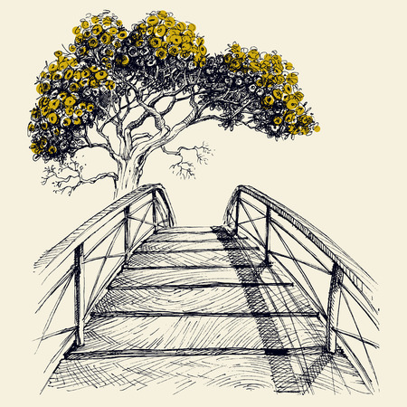 Arc de pont en bois, arbre en fleurs dans le vecteur de dessin à la main en arrière-plan