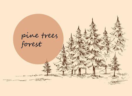 Pine forest background. Hand drawn nature landscape