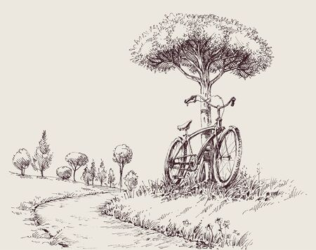 Park landscape sketch, an alley and a bike near a tree