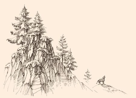 Top of the mountains landscape, alpine rocky cliffs and a wolf