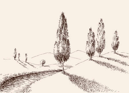 A footpath in nature, hills and poplars landscape