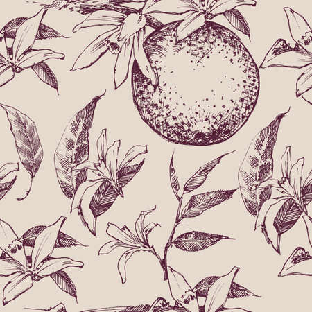 Orange fruits and leaves seamless pattern in vintage style