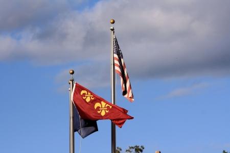 American and Fleur-de-lis flags Stock Photo - 21812325