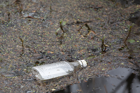 Close up of a flat bottle littering a shallow waterway