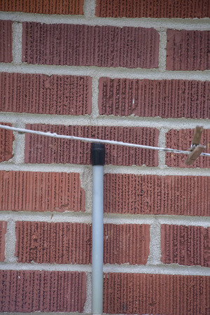 Cane near laundry hanging in front of red brick wall