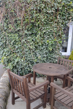 Wooden table and chairs with ivy background photo