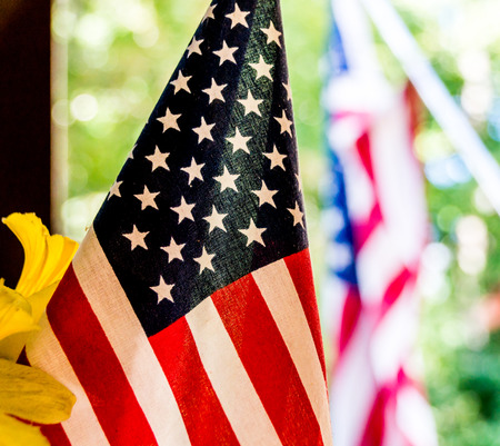 pledge of allegiance: Close-up shot of an American flag beside some yellow flowers with another American flag in the background.