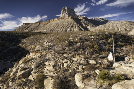 fossilized: Guadalupe Mountains National Park Stock Photo