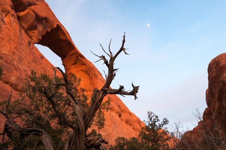 Skyline Arch in the late evening light  located in Arches National Park in Utah. Stock Photo