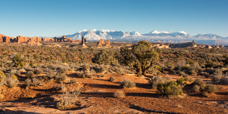 Late afternoon in Arches National Park with the backdrop of the La Salle Mountains. Arches is located outside Moab Utah. Stock Photo