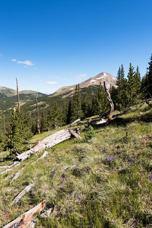 Boreas Mountain is 13,082 feet, which is above Boreas Pass that allows travel between the town of Breckenridge and the town of Como. Standard-Bild