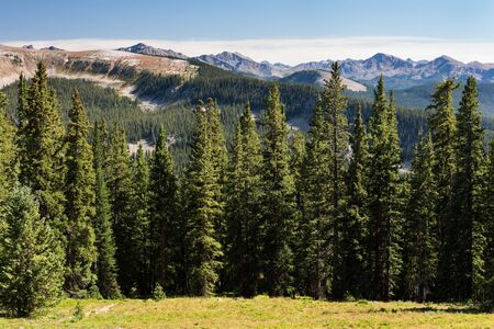 View of Cirque and Williams Mountains in White River National Forest, Colorado. Standard-Bild