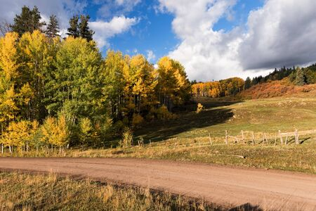 A forest service road takes visitors through the San Juan National Forest in early autumn, north of Pagosa Springs Colorado. Standard-Bild