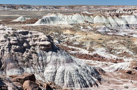 Petrified Forest National Park located within the Painted Desert of Arizona.